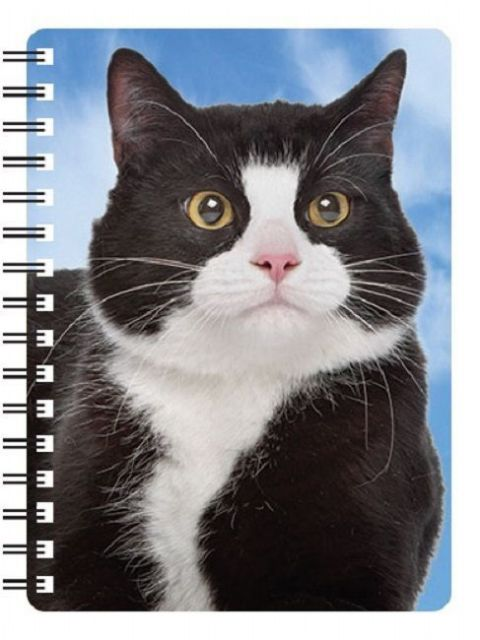 Black and White Cat 3D Notebook